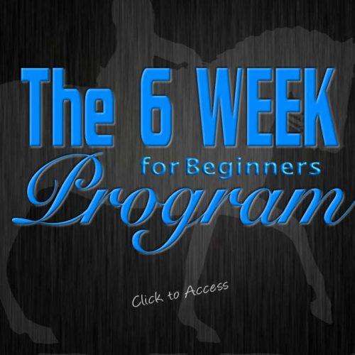 6 Week Workout |  Beginner