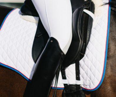 Saddle, leg & Seat-photoshootCD-520x520