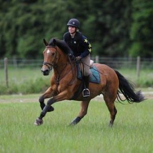 canter fitness
