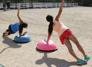 Side Planks:BOSU