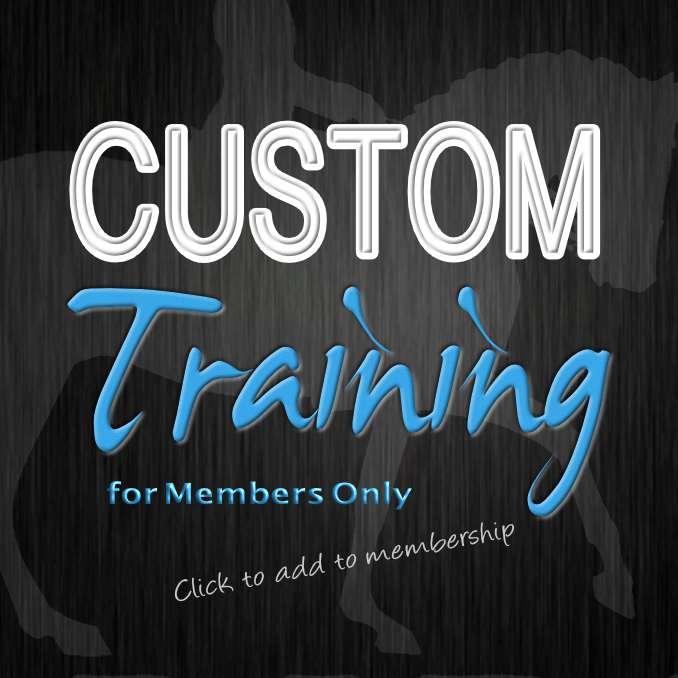 BRF:com-Custom Training-