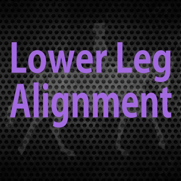 Lower Leg Alignment