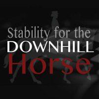 Stability for downhill horse Biorider