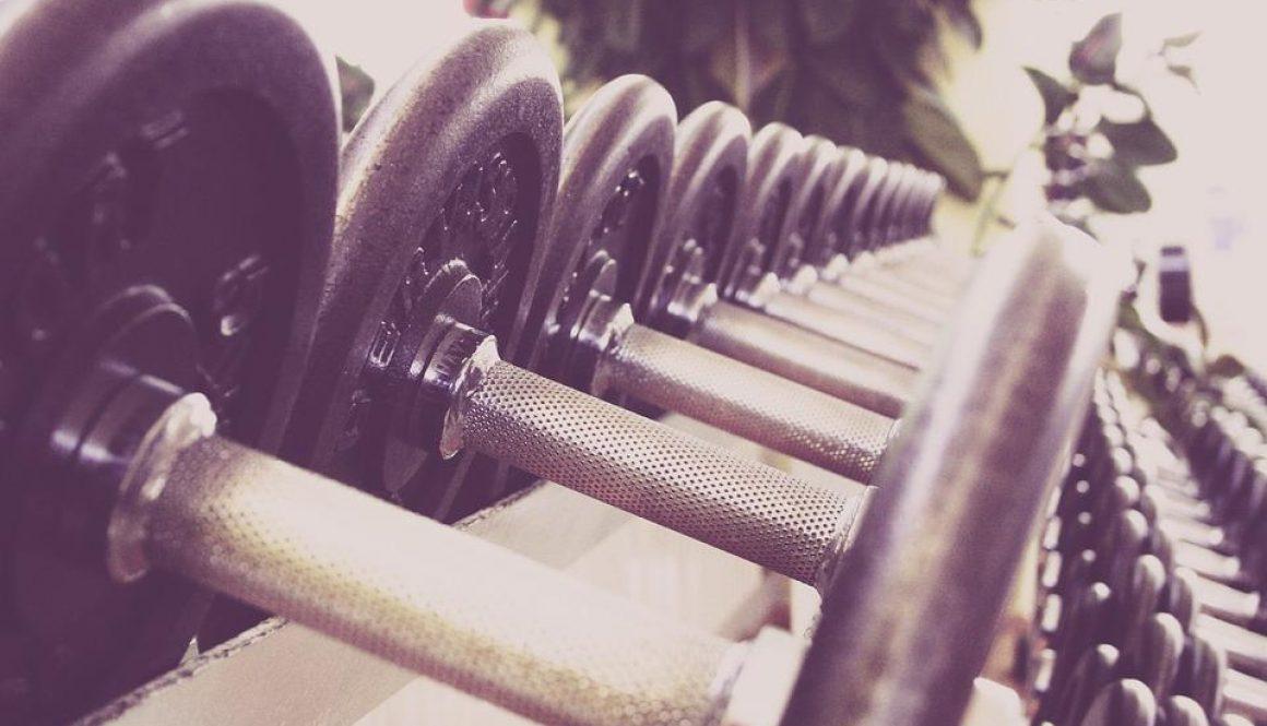 free weights-1-BioRider