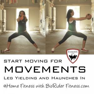 Move-movement-leg-yield-haunches