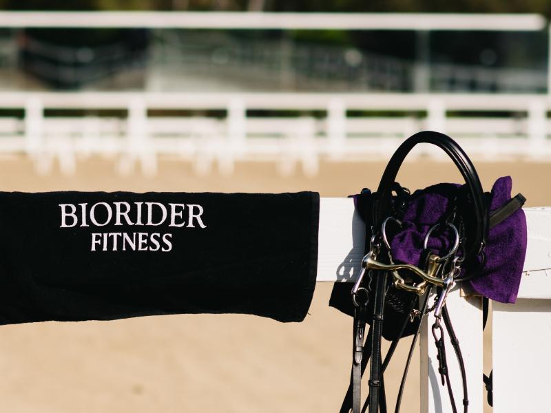 Towel-arena-bridle-BioRider
